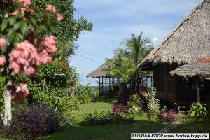 """Jungle Lodge """"Estancia Bello Horizonte"""", von Pfarrer Xavier Arbex gegründet. Aus den Gewinnen werden Sozialprojekte des Pfarrers mitfinanziert, Puerto Maldonado, Departamento Madre de Dios, Peru; Foto: Florian Kopp"""